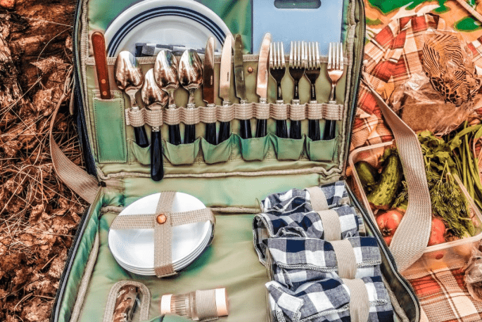 Top 10 Places to Have a Picnic in Chicago1